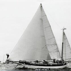 brest96-bourdin