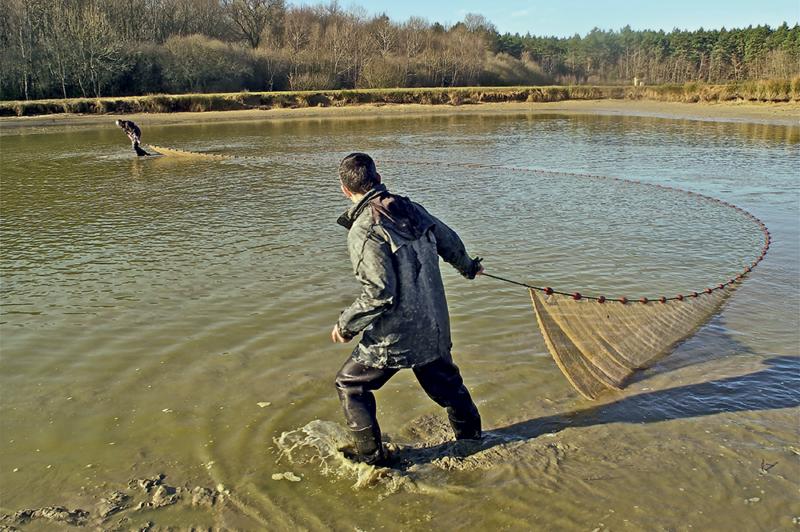 pêche sologne