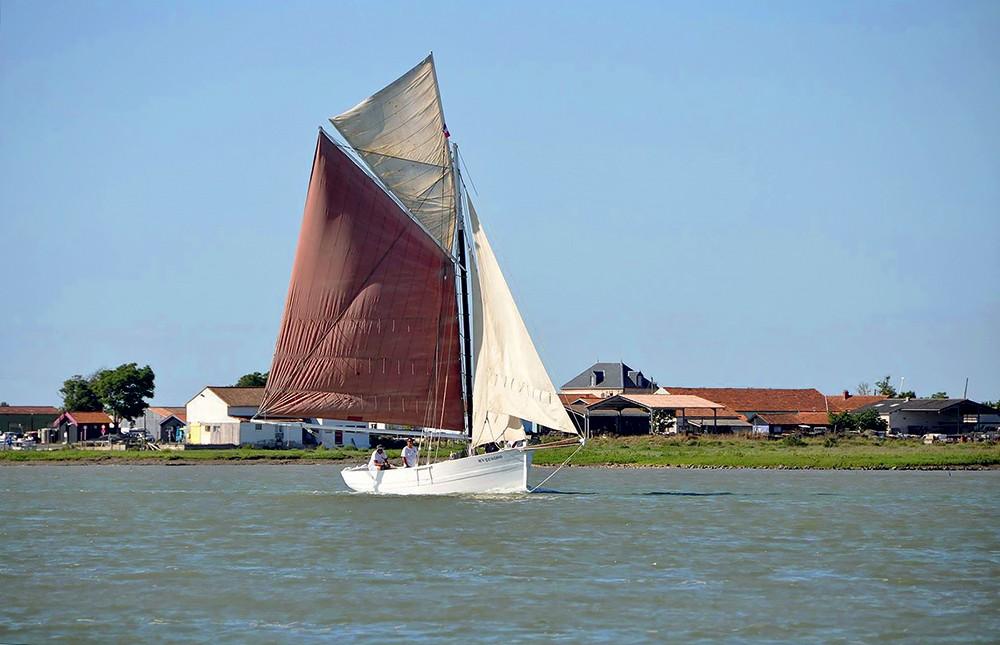 sauver la Flèche association seudre et mer
