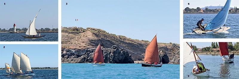 araur raid canots voile-aviron étang de thau