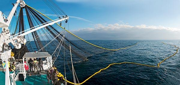 filet le drezen, entreprise Guilvinec, filet pêche, article pêche, Chasse-Marée
