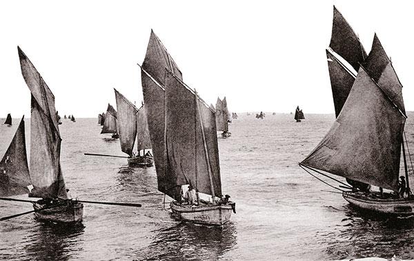 Photo sardiniers de retour de pêche