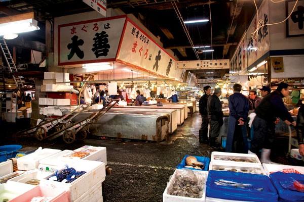 Cuisine, recette poisson, Ikejime bar, Bretagne, Ikejime technique