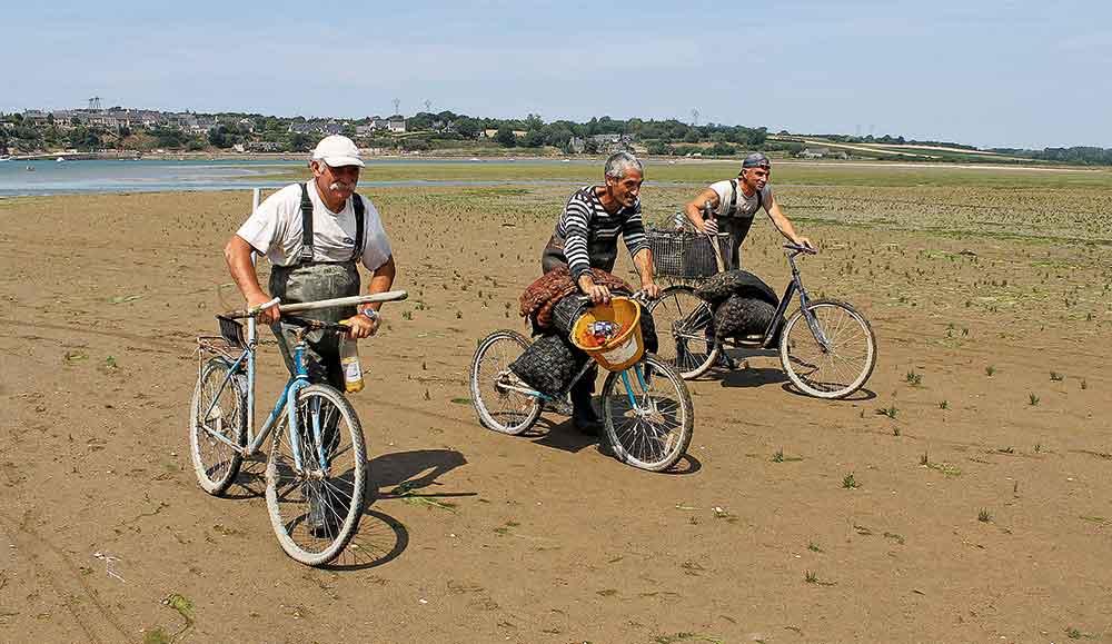 Des pêcheurs à pieds de retour de pêche