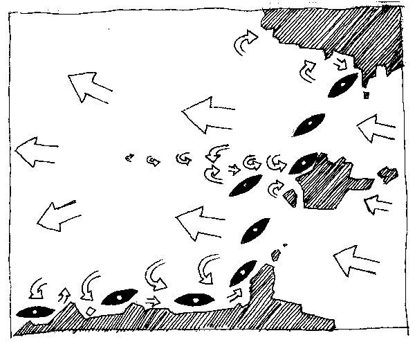 kayak de mer, Bernard Moulin