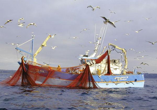conserveries, sardines, Chancerelle, Douarnenez