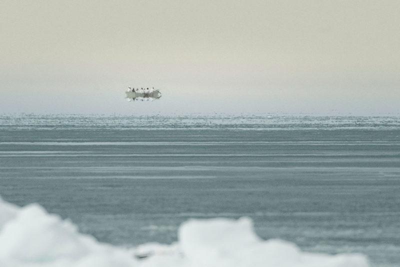 Kiliii Yüyan, pêche à la baleine, Inupiat, Alaska