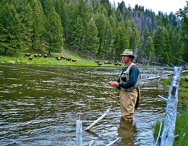 Homme pêche à la mouche