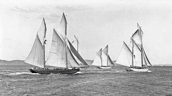 régate de bateau de tasmanie