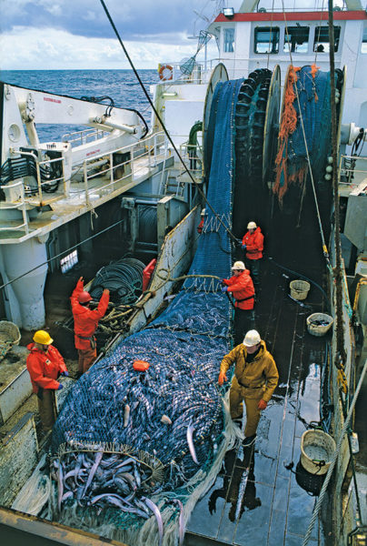 marins pêcheurs à la levée du filet