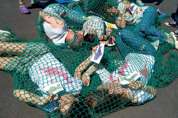 Pêche industrielle, ONG pêche, lobby pêche