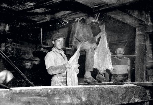 Chants de marins, port Fécamp, histoire Fécamp
