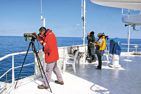 Observation en mer par les scientifiques de Pelagis