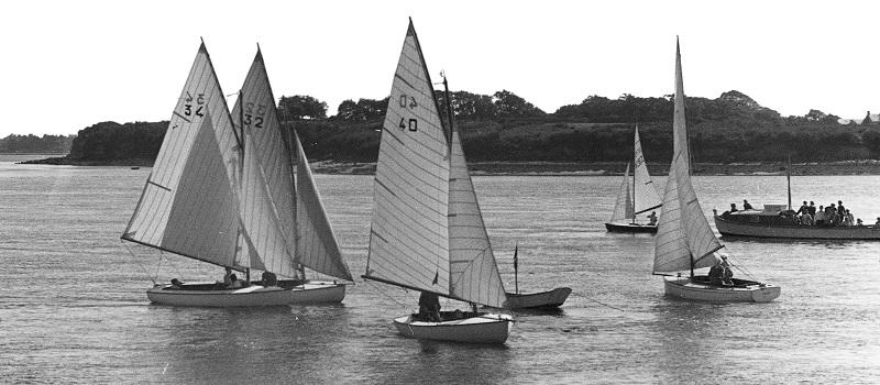 Monotype national en Morbihan